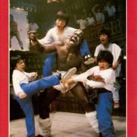 Al ataque Kung-Fu Kids (Kung-Fu Kids II) (1989)