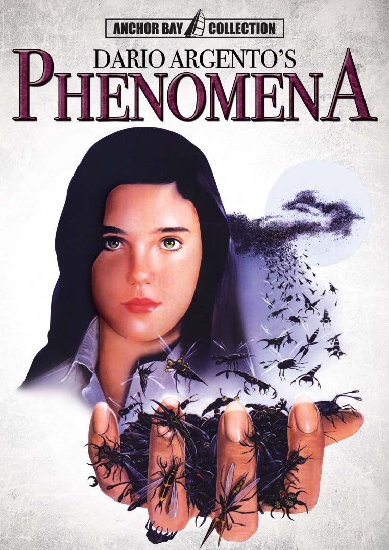 phenomenafront