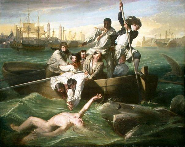 El pintor tampoco había visto nunca un tiburón